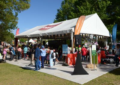 Dogwood-Arts-Festival-105