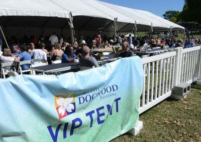 Dogwood-Arts-Festival-59