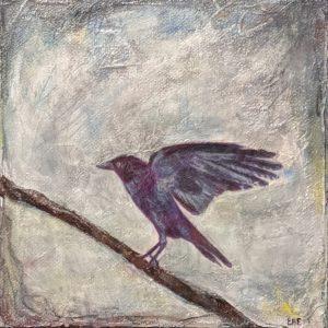 Bird 10 - E. Edmeades