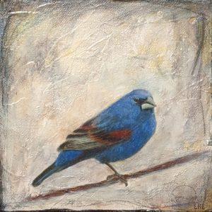 Bird 5 - E. Edmeades