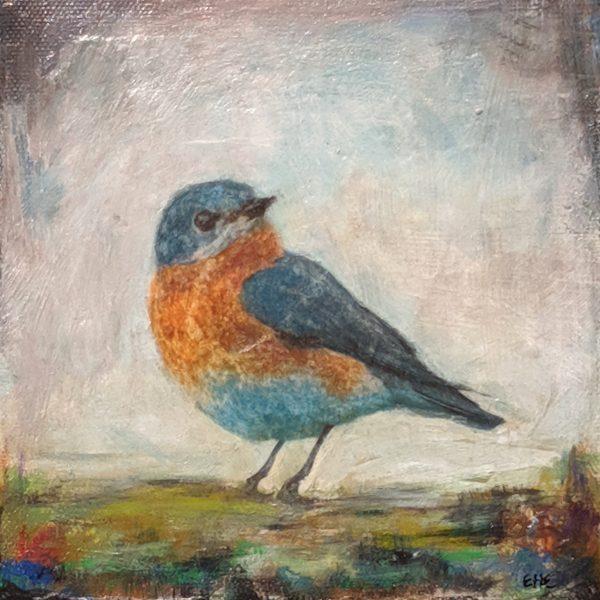 Bird 6 - E. Edmeades