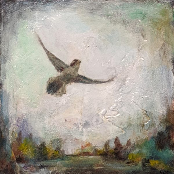 Bird 8 - E. Edmeades
