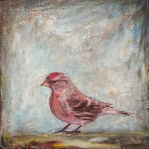 Bird 9 - E. Edmeades