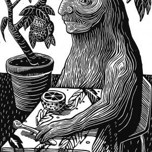 Tropicana - Bronwyn Katz