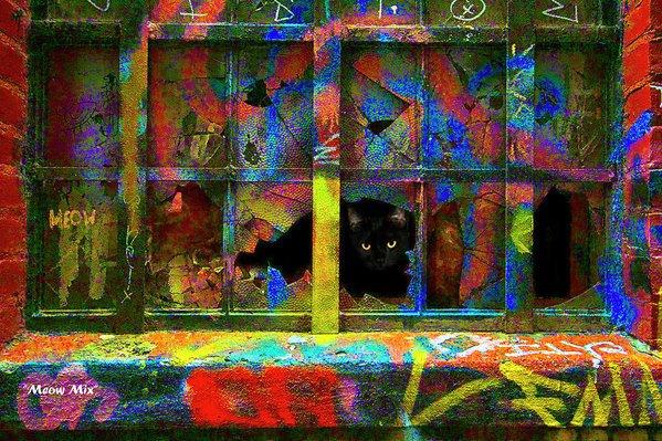 meow-mix-r-c-fulwiler - R. C. Fulwiler